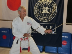 Hier mit Saijutsu Kata