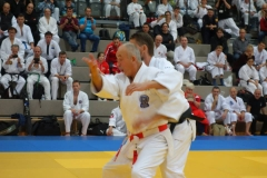 Prof.Dr. Deegen lehrte das elegante und effektive Nihon Jujutsu nach Großmeister Shizuya Sato 10.Dan Meijin.