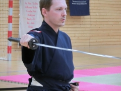 Iaido Seitwärtsschnitt mit höchster Konzentration